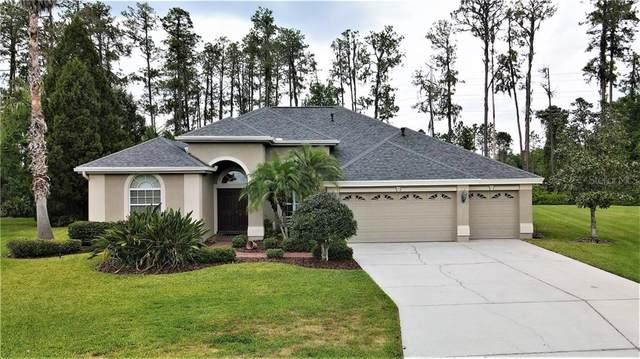 2933 Big Cypress Way, Wesley Chapel, FL 33544 (MLS #T3300570) :: RE/MAX LEGACY