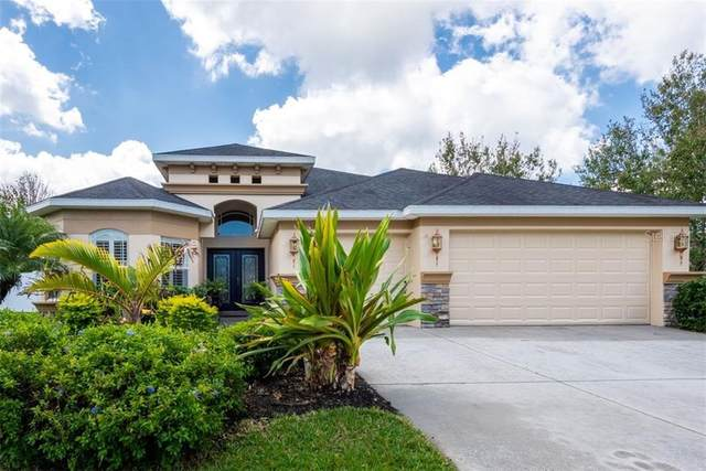 11535 Biddeford Place, New Port Richey, FL 34654 (MLS #T3300586) :: GO Realty