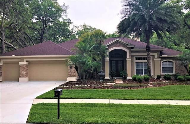 5610 Eagleglen Place, Lithia, FL 33547 (MLS #T3300593) :: Alpha Equity Team