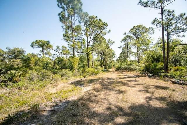 Lake Placid, FL 33852 :: Bustamante Real Estate