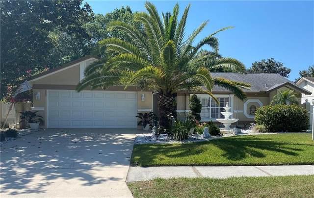 12211 Wildbrook Drive, Riverview, FL 33569 (MLS #T3300609) :: Dalton Wade Real Estate Group