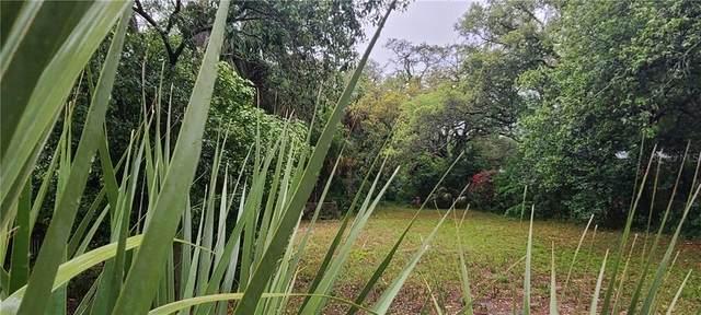 N Levis Avenue, Tarpon Springs, FL 34689 (MLS #T3300610) :: Armel Real Estate