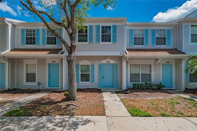 17405 Flatwoods Key Drive, Tampa, FL 33647 (MLS #T3300627) :: Team Bohannon Keller Williams, Tampa Properties