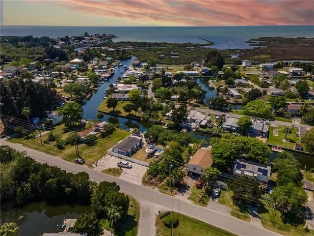 14831 Old Dixie Highway, Hudson, FL 34667 (MLS #T3300691) :: Dalton Wade Real Estate Group