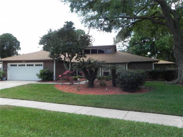 14210 Clarendon Drive, Tampa, FL 33624 (MLS #T3300702) :: McConnell and Associates