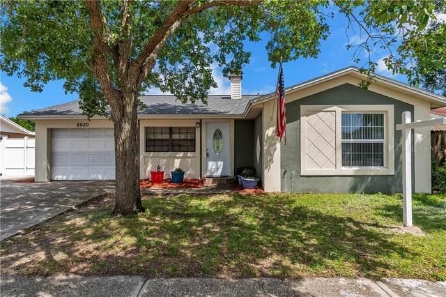 8020 Timberlane Drive, Tampa, FL 33615 (MLS #T3300728) :: Dalton Wade Real Estate Group