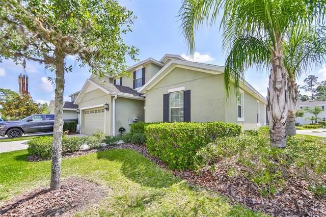 8115 Hampton View Lane, Tampa, FL 33647 (MLS #T3300776) :: Pepine Realty