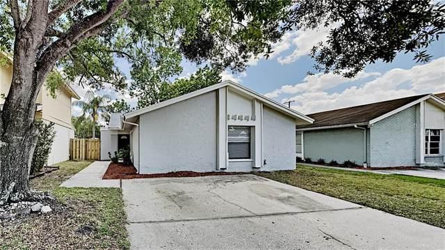 10503 Parkcrest Drive, Tampa, FL 33624 (MLS #T3300788) :: Team Borham at Keller Williams Realty