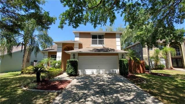 11212 Longbrooke Drive, Riverview, FL 33579 (MLS #T3300825) :: Everlane Realty
