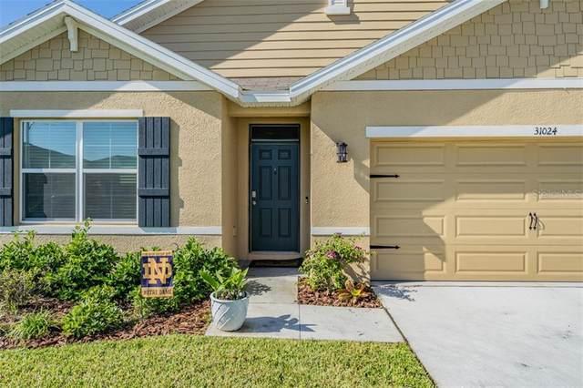 31024 Summer Sun Loop, Wesley Chapel, FL 33545 (MLS #T3300853) :: Frankenstein Home Team