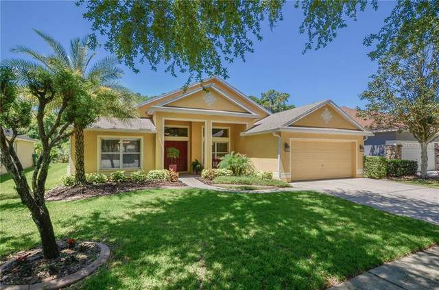 5911 Tealwater Place, Lithia, FL 33547 (MLS #T3300872) :: Frankenstein Home Team