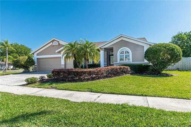 1781 Eagle Trace Boulevard, Palm Harbor, FL 34685 (MLS #T3300877) :: Burwell Real Estate