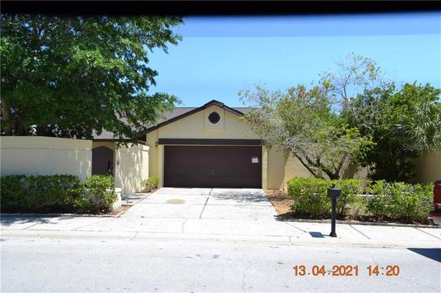 13563 Avista Drive, Tampa, FL 33624 (MLS #T3300916) :: Griffin Group