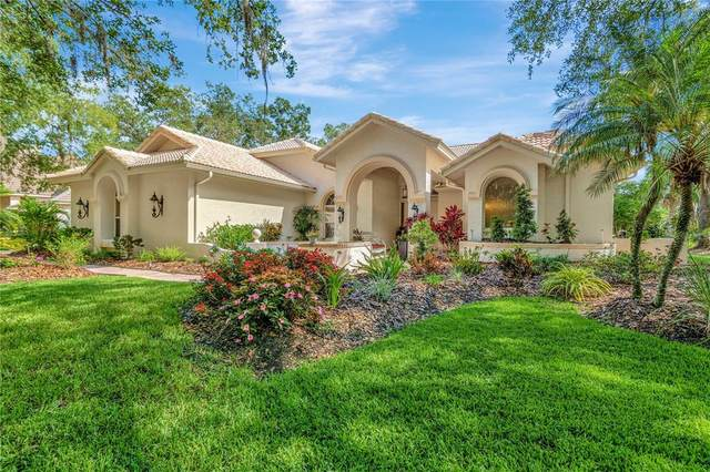 8961 Magnolia Chase Circle, Tampa, FL 33647 (MLS #T3300921) :: Delgado Home Team at Keller Williams