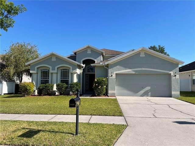 34429 Blue Ash Court, Wesley Chapel, FL 33545 (MLS #T3300934) :: Dalton Wade Real Estate Group
