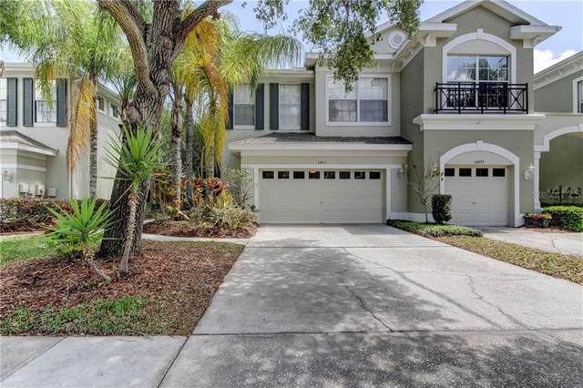 14061 Waterville Circle, Tampa, FL 33626 (MLS #T3300951) :: Griffin Group