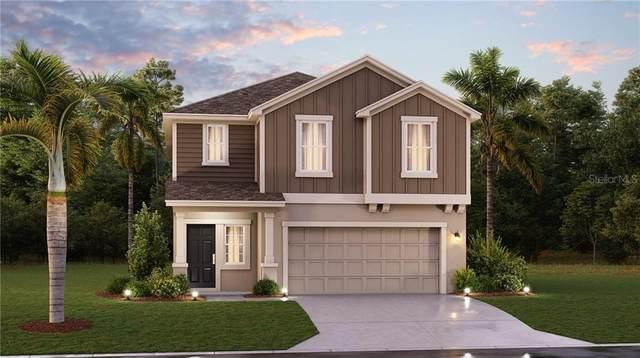 1825 Heart Lake Drive, Groveland, FL 34736 (MLS #T3300961) :: Frankenstein Home Team