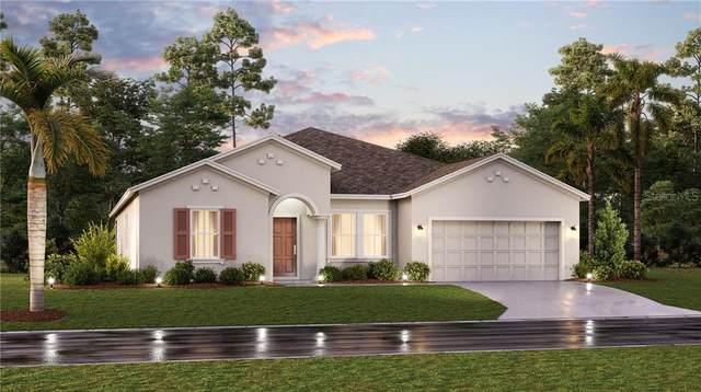 6987 Perch Hammock Loop, Groveland, FL 34736 (MLS #T3300969) :: Frankenstein Home Team