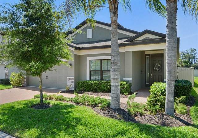 8027 Arbor Park Lane, Riverview, FL 33578 (MLS #T3301001) :: Rabell Realty Group