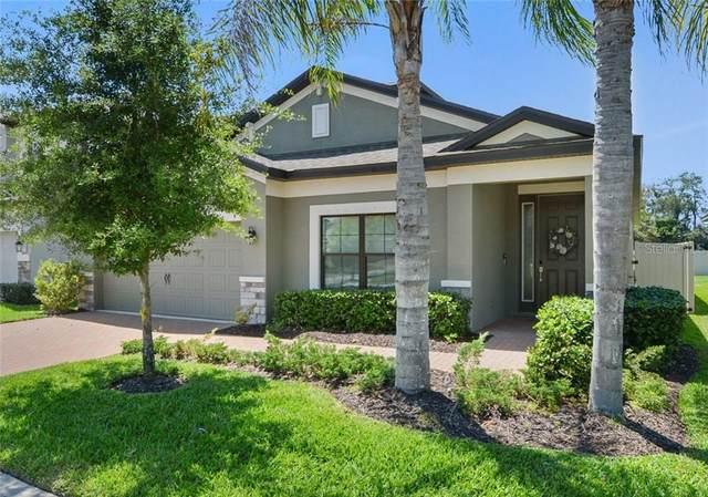 8027 Arbor Park Lane, Riverview, FL 33578 (MLS #T3301001) :: Team Bohannon Keller Williams, Tampa Properties