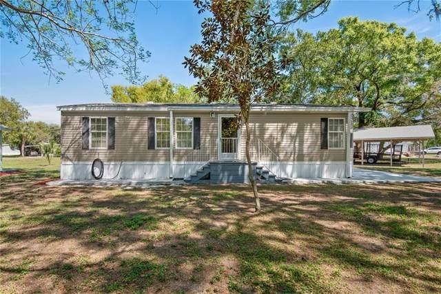 4100 Ernest Drive, Wesley Chapel, FL 33543 (MLS #T3301023) :: Team Bohannon Keller Williams, Tampa Properties