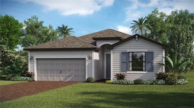 11195 Balfour Street, Venice, FL 34293 (MLS #T3301122) :: Visionary Properties Inc