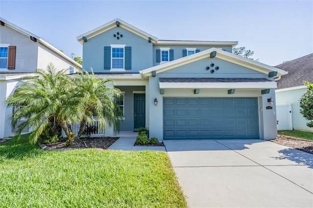 11315 Quiet Forest Drive, Tampa, FL 33635 (MLS #T3301143) :: Team Bohannon Keller Williams, Tampa Properties