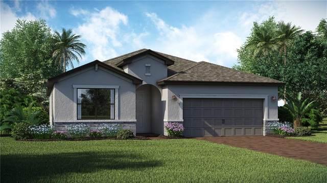 11170 Balfour Street, Venice, FL 34293 (MLS #T3301194) :: Visionary Properties Inc