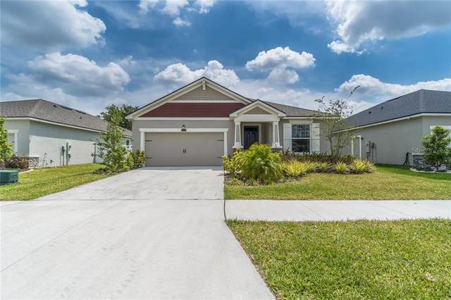 13019 Satin Lily Drive, Riverview, FL 33579 (MLS #T3301213) :: Everlane Realty