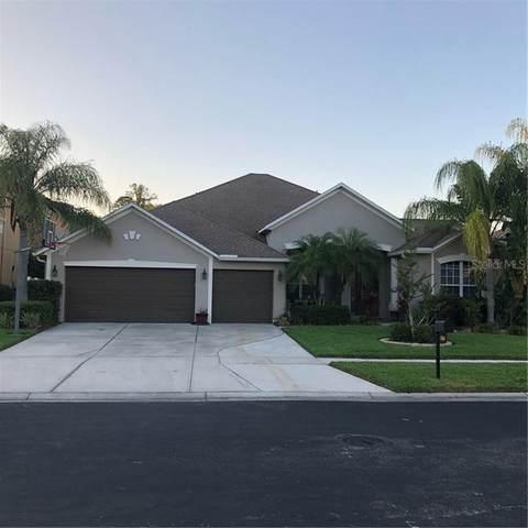 3249 Evening Breeze Loop, Wesley Chapel, FL 33544 (MLS #T3301226) :: Team Bohannon Keller Williams, Tampa Properties
