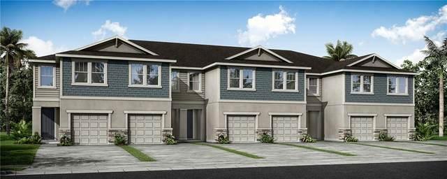 2551 Good Will Lane 11/6B, Lutz, FL 33558 (MLS #T3301237) :: New Home Partners