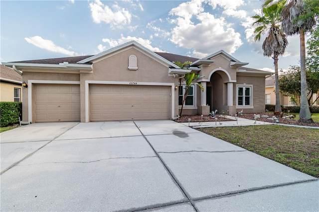 22744 Cliffside Way, Land O Lakes, FL 34639 (MLS #T3301318) :: Team Bohannon Keller Williams, Tampa Properties