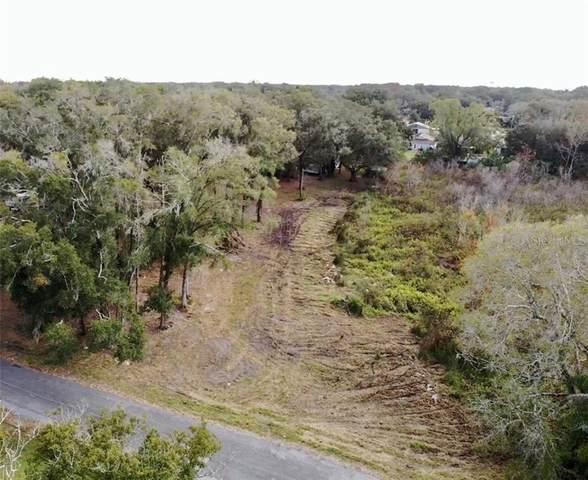 207 E Lutz Lake Fern, Lutz, FL 33549 (MLS #T3301328) :: The Lersch Group