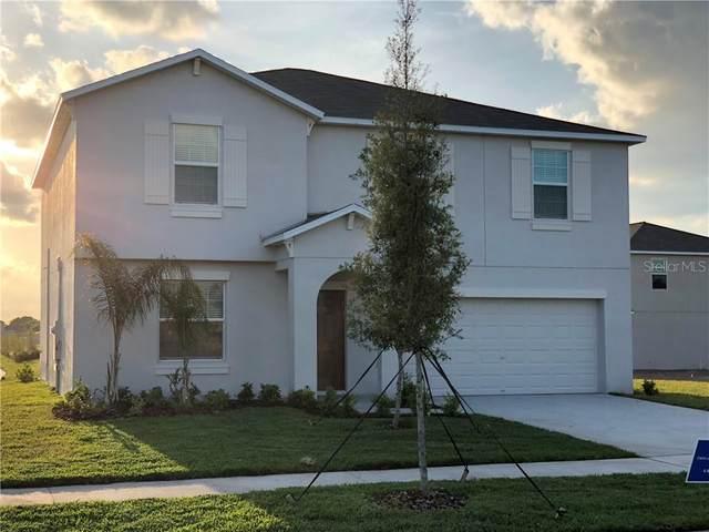 10103 Crested Fringe Drive, Riverview, FL 33578 (MLS #T3301337) :: Team Bohannon Keller Williams, Tampa Properties