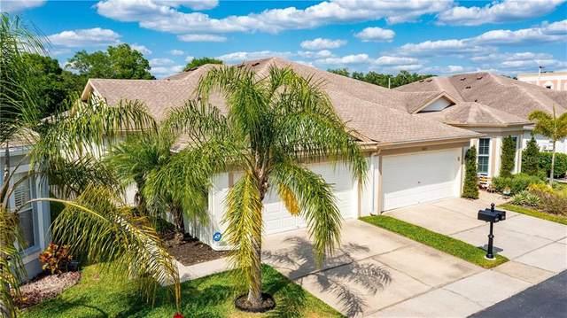 Tampa, FL 33625 :: Aybar Homes