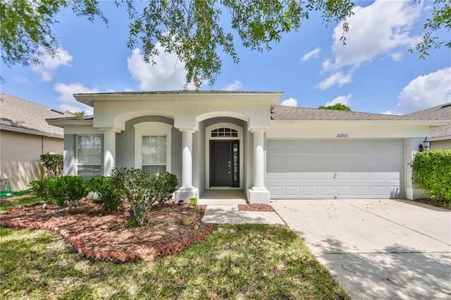 26923 Affirmed Drive, Wesley Chapel, FL 33544 (MLS #T3301406) :: Team Bohannon Keller Williams, Tampa Properties