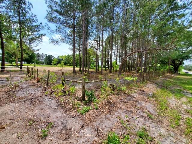 29040 Johnston Road, Dade City, FL 33523 (MLS #T3301415) :: Bridge Realty Group
