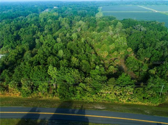 2903 Timberlee Road, Wimauma, FL 33598 (MLS #T3301489) :: The Paxton Group