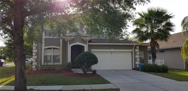 4520 Fieldview Circle, Wesley Chapel, FL 33545 (MLS #T3301494) :: Coldwell Banker Vanguard Realty
