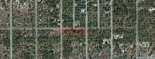 0 Sw Pensacola Drive, Dunnellon, FL 34431 (MLS #T3301506) :: Rabell Realty Group