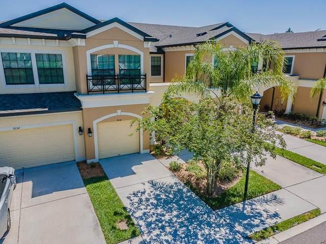 9136 Fox Sparrow Road, Tampa, FL 33626 (MLS #T3301528) :: Team Bohannon Keller Williams, Tampa Properties