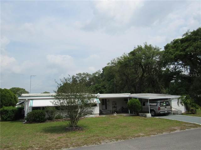 37216 Lois Avenue, Zephyrhills, FL 33542 (MLS #T3301565) :: Zarghami Group