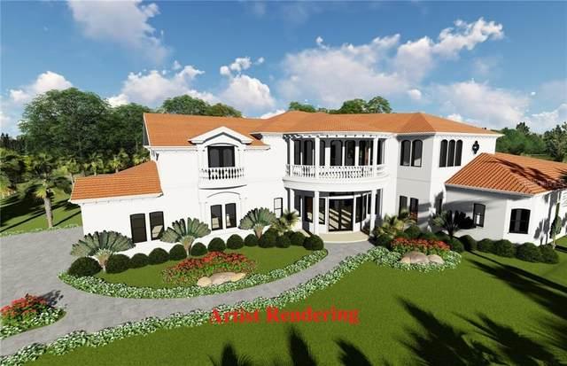 17211 Journeys End Drive, Odessa, FL 33556 (MLS #T3301591) :: Armel Real Estate