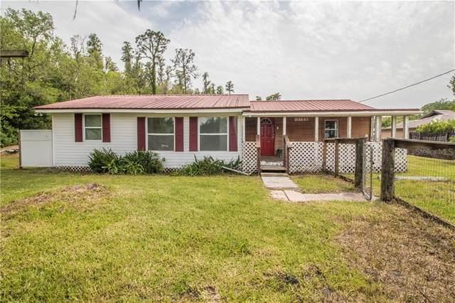 12159 Lakeland Acres Road, Lakeland, FL 33810 (MLS #T3301593) :: Zarghami Group