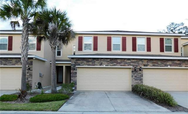 13207 Canopy Creek Drive, Tampa, FL 33625 (MLS #T3301650) :: Realty Executives in The Villages