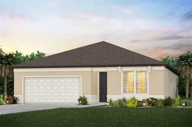 20796 Monza Loop, Land O Lakes, FL 34638 (MLS #T3301651) :: Team Bohannon Keller Williams, Tampa Properties