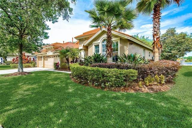 10249 Arbor Side Drive, Tampa, FL 33647 (MLS #T3301654) :: The Nathan Bangs Group