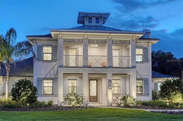 16134 Carencia Lane, Odessa, FL 33556 (MLS #T3301680) :: Premier Home Experts