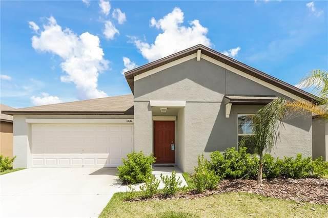 Riverview, FL 33578 :: Team Bohannon Keller Williams, Tampa Properties