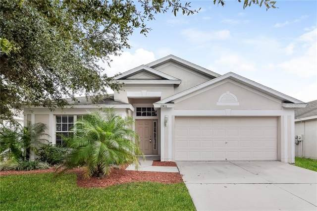 Riverview, FL 33579 :: Team Bohannon Keller Williams, Tampa Properties